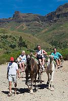 Spain, Gran Canaria, Camel riding in interior of island | Spanien, Gran Canaria, Kamelreiten im Landesinnern
