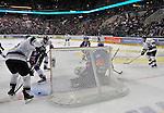 Adler Mannheim - Nuernberg Ice Tigers 06.12.2015