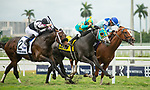 February 1, 2020: #4, Field Pass and Paco Lopez thread the needle to take the Dania Beach Stakes for Trainer Mike Maker at Gulfstream Park on February 1, 2020 in Hallandale Beach, FL. (Photo by Carson Dennis/Eclipse Sportswire/CSM)