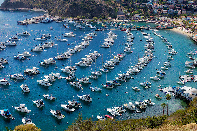 Boats in Catalina Harbor. Catalina Island, California