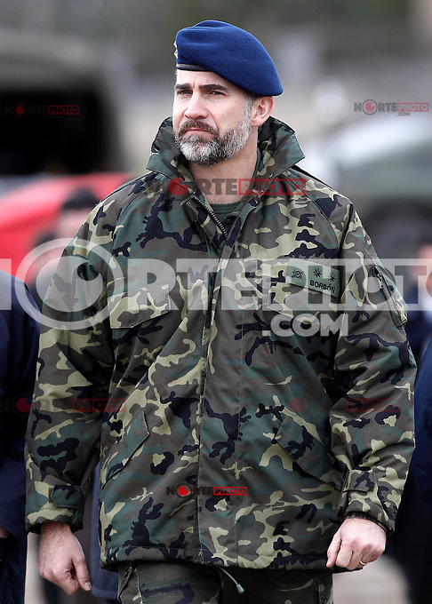 """Prince Felipe of Spain during exercise """"GAMMA PALAZUELOS 2013"""" of theMIlitary Unit of Emergency (UME).March 11 ,2013. (ALTERPHOTOS/Acero) /NortePhoto"""