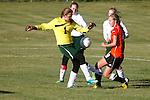 2013 Fall Sports
