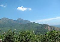 Lush green hills of Munnar,Kerala
