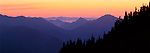 Olympic National Park, WA<br /> Colors of twilight fill the ridges and valleys of the Olympic Range from Hurricane Hill