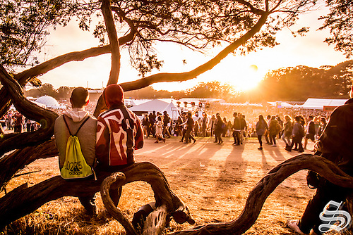 Outside_Lands-18.jpg by The Stanford Daily