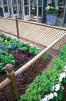Red lettuce and salad greens in backyard fenced vegetable garden, patio, open doors to house