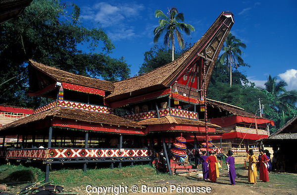 Asie, Indonésie, Sulawesi, pays Toraja, habitat traditionnel//Asia, Indonesia, Sulawesi, Toraja country, traditional house