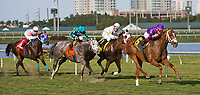 HALLANDALE BEACH, FL - JANUARY 27: Rainbow Heir #6, with Irad Ortiz Jr. riding, wins the Gulfstream Park Turf Sprint Stakes on Pegasus World Cup Invitational Day at Gulfstream Park Race Track on January 27, 2018 in Hallandale Beach, Florida. (Photo by Liz Lamont/Eclipse Sportswire/Getty Images)