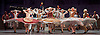The Flames of Paris <br /> Bolshoi Ballet <br /> at The Royal Opera House, Covent Garden, London, Great Britain <br /> 5th August 2016 <br /> rehearsals<br /> <br /> <br /> <br /> <br /> <br /> <br /> Photograph by Elliott Franks <br /> Image licensed to Elliott Franks Photography Services