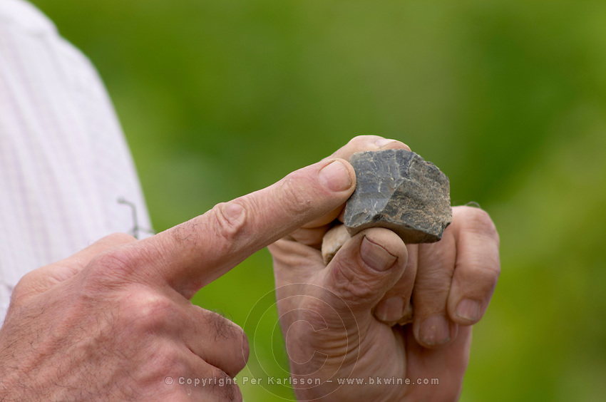 blue volcanic ftanite rock. Luc Bizard of Chateau d'Epire. Savennieres, Anjou, Loire, France