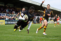 Wasps v Welsh 20121028