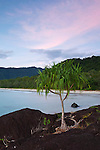 Twilight view along Noah Beach.  Daintree National Park, Queensland, Australia