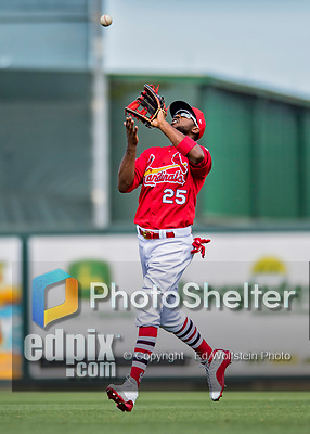28 February 2019: St. Louis Cardinals outfielder Dexter Fowler in action during a Spring Training game against the New York Mets at Roger Dean Stadium in Jupiter, Florida. The Mets defeated the Cardinals 3-2 in Grapefruit League play. Mandatory Credit: Ed Wolfstein Photo *** RAW (NEF) Image File Available ***