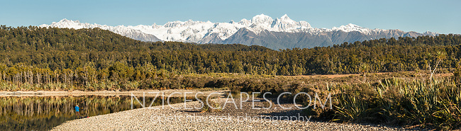Winter Southern Alps with Mount Tasman 3497m and Aoraki Mount Cook 3724m viewed over native forest and lagoon with person on left, Westland Tai Poutini National Park, West Coast, UNESCO World Heritage Area, New Zealand, NZ