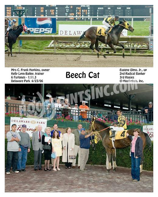 Beech Cat winning at Delaware Park on 4/23/2006