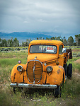 Orange 1939 Ford truck, Challis, Idaho