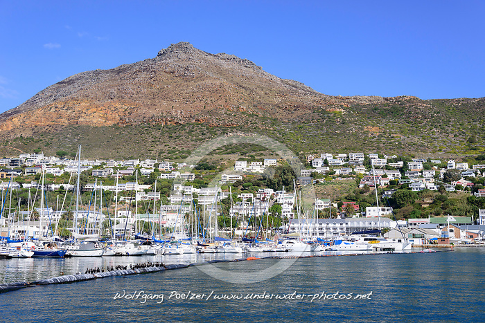 Hafen von Simons Town, Harbor of Simons Town, False Bay, Simons Town, Suedafrika, Indischer Ocean, False bay, Simons Town, South Africa, Indian Ocean