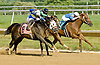 Picko's Pride winning at Delaware Park on 6/25/12