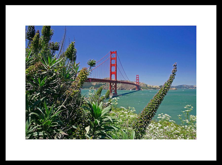 Golden Gate Bridge in San Fransico, California. © Andrew Shurtleff