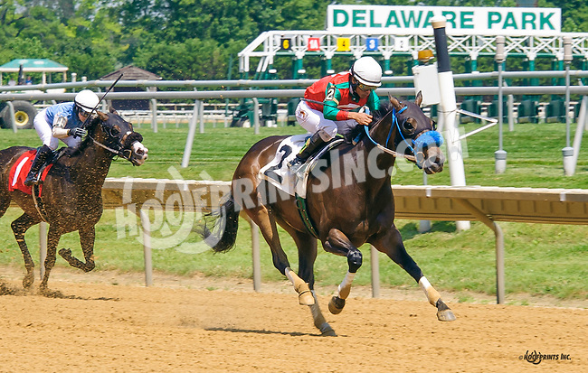 Fit For A Lady winning at Delaware Park on 6/25/16