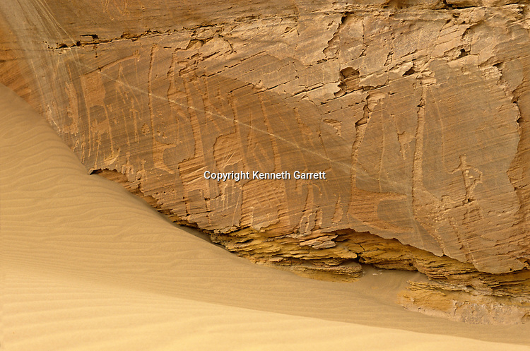 Prehistoric rock art of giraffes with leads (leashes indicate domestication) and an elephant, found along  Darb el-Arbaein, trade route, Egypt; Archaeologist; Salima Ikram; Corrine Rossi,Kharga Oasis;Ancient Cultures; mm7195; Desert; Oasis