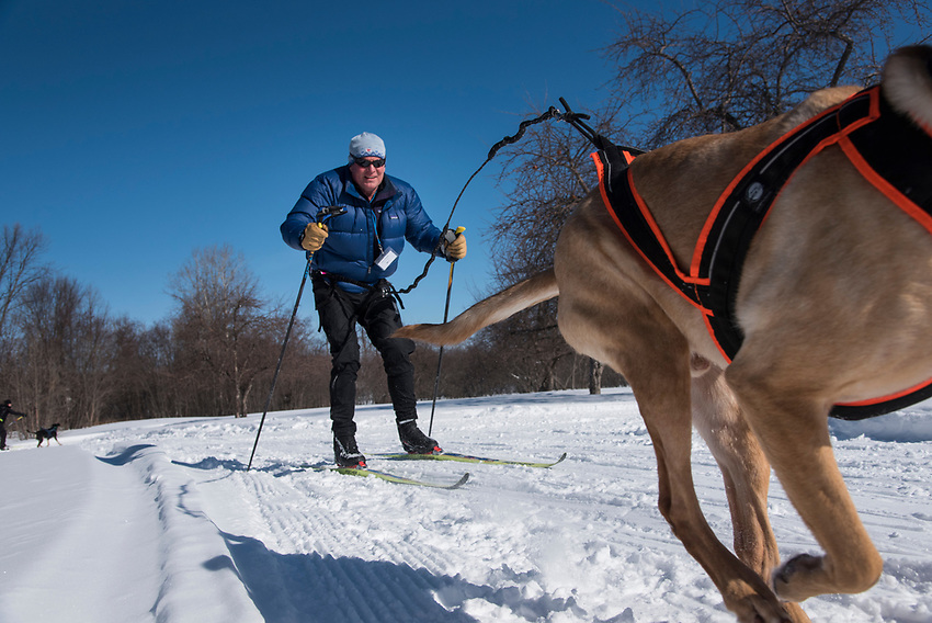 A skijoring class at the Michigan Department of Natural Resources Becoming an Outdoors Woman program at Bay Cliff Health Camp in Big Bay, Michigan.
