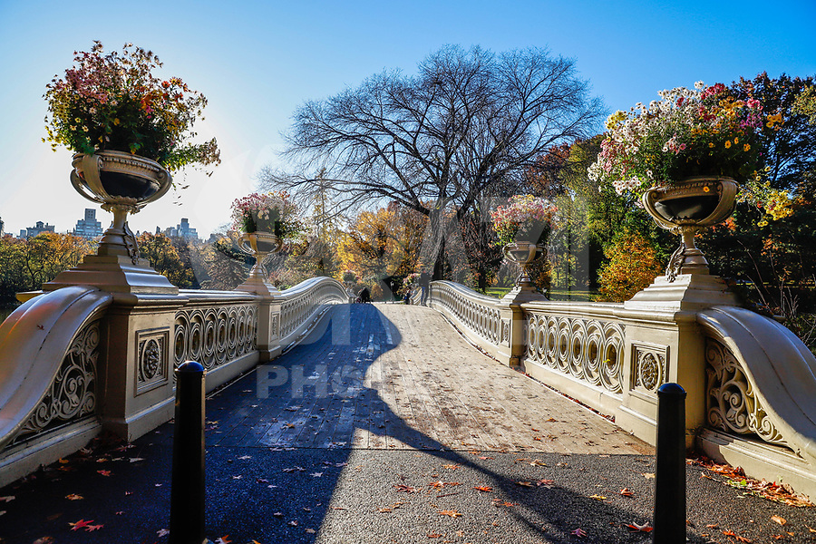 NOVA YORK, EUA, 07.11.2018 - OUTONO-NOVA YORK - Vista das arvores com folhagem coloridas no Central Park durante o outono na cidade de Nova York nos Estados Unidos. (Foto: Vanessa Carvalho/Brazil Photo Press)