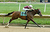 B for Beez winning at Delaware Park on 9/29/10