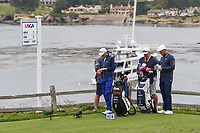Bryson DeChambeau (USA) looks over his tee shot on 7 during round 2 of the 2019 US Open, Pebble Beach Golf Links, Monterrey, California, USA. 6/14/2019.<br /> Picture: Golffile | Ken Murray<br /> <br /> All photo usage must carry mandatory copyright credit (© Golffile | Ken Murray)