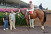 House Money winning at Delaware Park on 8/5/14