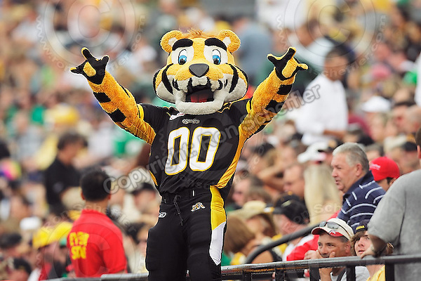 July 12, 2008; Hamilton, ON, CAN; Hamilton Tiger-Cats mascot Stripes prior to the CFL football game against the Saskatchewan Roughriders at Ivor Wynne Stadium. The Roughriders defeated the Tiger-Cats 33-28. Mandatory Credit: Ron Scheffler.