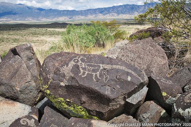 A petroglyph resembling a strange cat-like creature looks out over the Sacramento Mountains at Three Rivers State park near Tularosa, New Mexico