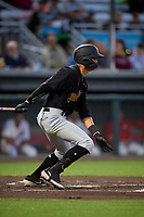 West Virginia Black Bears Blake Sabol (24) at bat during a NY-Penn League game against the Auburn Doubledays on August 23, 2019 at Falcon Park in Auburn, New York.  West Virginia defeated Auburn 6-5, the second game of a doubleheader.  (Mike Janes/Four Seam Images)
