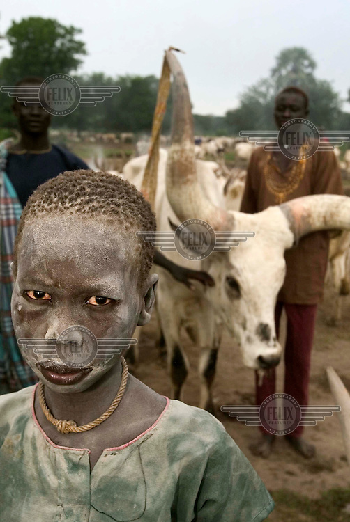 A young boy at a cattle camp. This group of pastoralists stay near the local police station for security following tribal disputes.