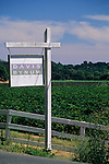 Davis Bynum sign and vineyard, Westside Road, Sonoma County, California
