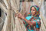 A woman dries jute in the sun in Kunderpara, a village on an island in the Brahmaputra River in northern Bangladesh. .