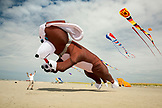USA, Washington State, Long Beach Peninsula, International Kite Festival, a man gets jumped on by his huge dog kite