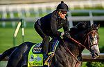 LOUISVILLE, KENTUCKY - APRIL 29: Roadster, trained by Bob Baffert, exercises in preparation for the Kentucky Derby at Churchill Downs in Louisville, Kentucky on April 29, 2019. John Voorhees/Eclipse Sportswire/CSM