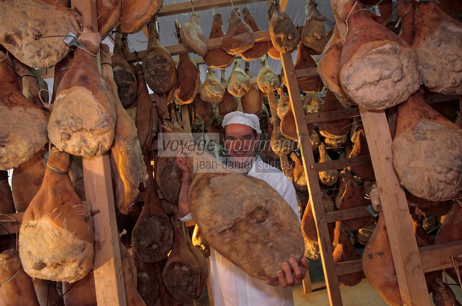 Europe/France/Aquitaine/64/Pyrénées-Atlantiques/Les Aldudes: Pierre Oteiza dans son séchoir des jambons de porc basque dans la vallée des Aldudes [Non destiné à un usage publicitaire - Not intended for an advertising use]