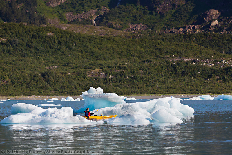 Tourists kayak amongst icebergs in Nellie Juan Lagoon, Prince William Sound, Chugach National Forest, Kenai Peninsula, southcentral, Alaska.