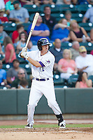 Zach Voight (12) of the Winston-Salem Dash at bat against the Carolina Mudcats at BB&T Ballpark on June 6, 2014 in Winston-Salem, North Carolina.  The Mudcats defeated the Dash 3-1.  (Brian Westerholt/Four Seam Images)