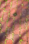 Brick path texture