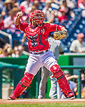 26 April 2014: Washington Nationals catcher Sandy Leon in action against the San Diego Padres at Nationals Park in Washington, DC. The Nationals shut out the Padres 4-0 to take the third game of their 4-game series. Mandatory Credit: Ed Wolfstein Photo *** RAW (NEF) Image File Available ***