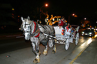 A horsedrawn carriage is a romantic way to see the night sites of downtown Honolulu.   This carriage takes couples around to  see the Christmas Tree lights of Honolulu Hale.