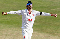 Sir Alastair Cook of Essex celebrates during the team changeover during Essex CCC vs Surrey CCC, Bob Willis Trophy Cricket at The Cloudfm County Ground on 10th August 2020