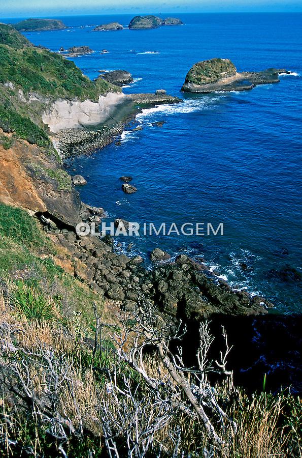 Ilha de Chiloé. Chile. 2000. Foto de Vinicius Romanini. Data.2000