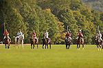 Horses- Riding