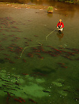 FLY FISHING IN THE KULIK RIVER IN ALASKA IN THE FALL FOR SALMON