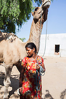 Nitu (not her real name), stands with her camel for a portrait in her house in Jhaju village, Bikaner, Rajasthan, India on 4th October 2012. Now 18, she was married off at age 10 to a boy of around the same age, but only went to live with her in-laws when she was 12, after she had finished studying up to class 6. The three sisters, aged 10, 12, and 15 were married off on the same day by their maternal grandfather while their father was hospitalized. She was abused by her young husband and in-laws so her father took her back after hearing that her husband, who works in a brick kiln, was an alcoholic and was doing drugs and crime. She had only spent a few days at her husband's house at that time. Her father (now out of the hospital) has said that she will only be allowed to return to her husband's house if he changes his ways but so far, the negotiations are still underway. Photo by Suzanne Lee for PLAN UK