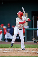 Harrisburg Senators right fielder Yadiel Hernandez (12) at bat during the second game of a doubleheader against the New Hampshire Fisher Cats on May 13, 2018 at FNB Field in Harrisburg, Pennsylvania.  Harrisburg defeated New Hampshire 2-1.  (Mike Janes/Four Seam Images)